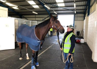 Enable flies to the Breeders Cup with InstoneAir
