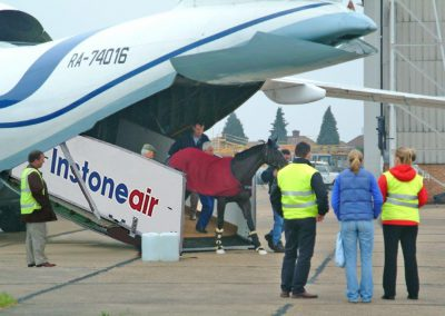 Horse unloading via InstoneAir ramp