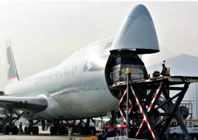 Cathay Pacific loading horses to HKG
